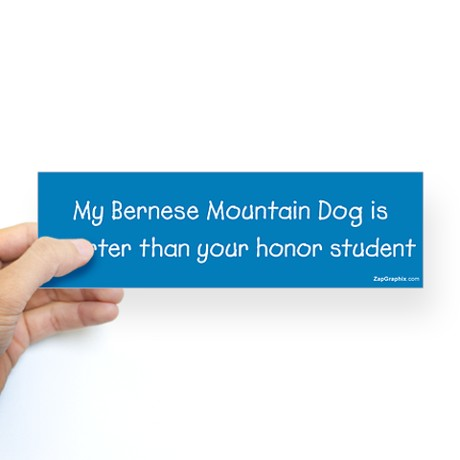 bernese_mountain_dog_honor_student
